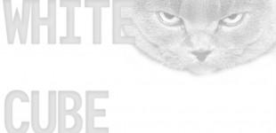 CHERYL: WHITE CUBE